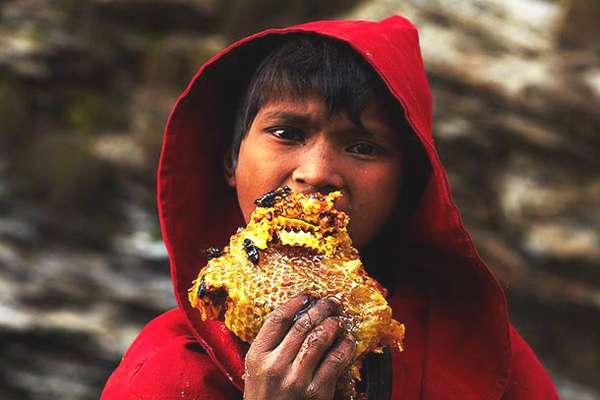 Andrew-Newey-chasseurs-miel-Nepal-12